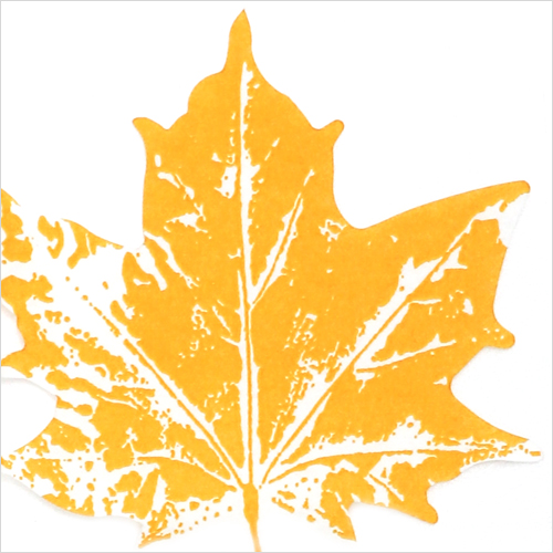 0942 수입냅킨 31*31cm 12장 Maple leaf yellow