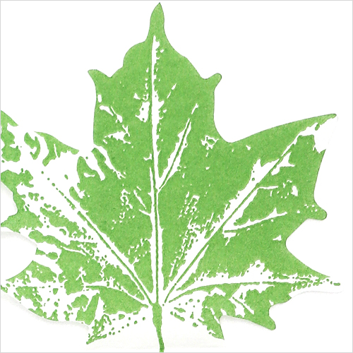 1113 수입냅킨 31*31cm 12장 Maple leaf green